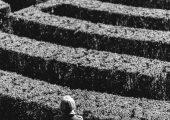 Besøg en labyrint-park